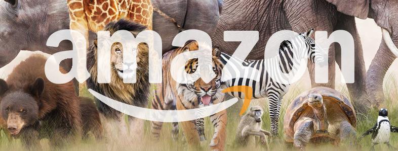 amazonサイト内には有象無象がいる